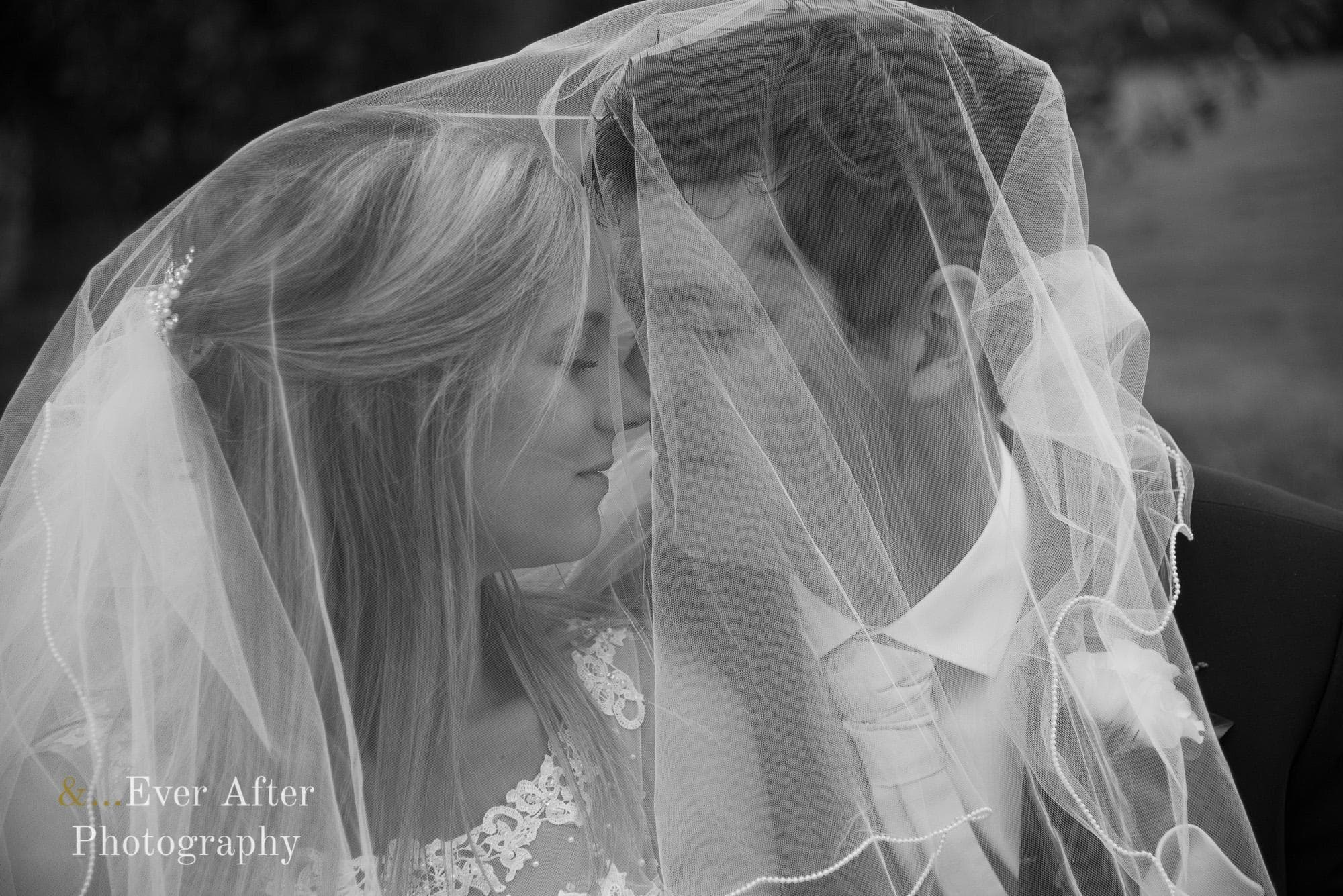 bride, groom, veil, love, married, photograph