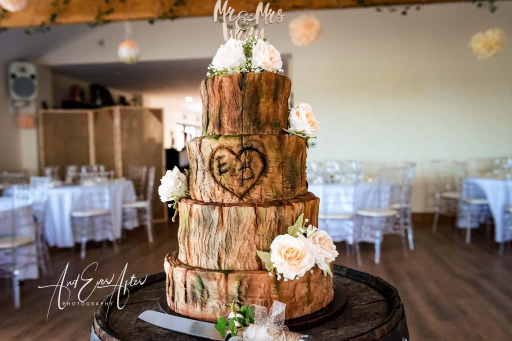 Thief hall wedding photographer wedding cake in hall