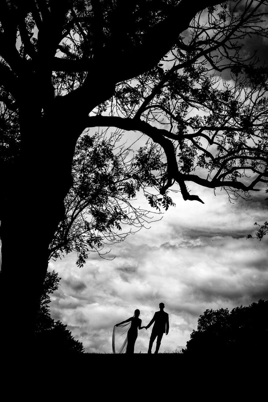 Wedding photography, black horse beamish wedding photography, bride and groom
